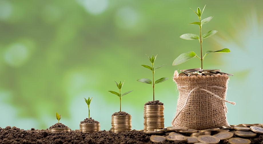 FFF и бизнес-ангелы: как получить первые средства на развитие бизнес-идеи